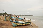 Negombo Fish market, Sri Lanka. Fishermen near their fishing boats