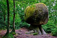 France, Finistère (29), parc naturel régional d'Armorique, Huelgoat, chaos granitique de la forêt de Huelgoat, Rocher Champignon // France, Finistere (29), regional natural park of Armorique, Huelgoat, granite chaos of the forest of Huelgoat, Mushroom Rock