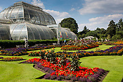 The Palm house, Kew Gardens, Kew, London. UK.