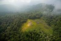 Aerial view of the Foja Mountains rain forest.<br />