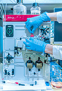 Siena, Mad Lab, working at the chromatography system for recombinant antibody purification