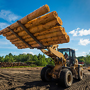 15044 Excalibur Saw Mill Lumber