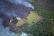 lava originating from Kilauea Volcano, erupting from fissure 8 in Leilani Estates, near Pahoa, flows through lower Puna into Kapoho, destroying agricultural properties and burning trees, streets, and structures, Hawaii ( the Big Island ), Hawaiian Islands, U.S.A.