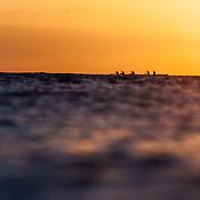 Paddling at sunset, Kaimana Beach, Honolulu, Hawaii. Photo by Logan Mock-Bunting