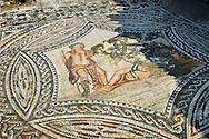 Roman Mosaics of Bacchus encountering the sleeping Ariadne from the House of the Ephebe.  Volubilis Archaeological Site, near Meknes, Morocco .<br /> <br /> If you prefer to buy from our ALAMY PHOTO LIBRARY  Collection visit : https://www.alamy.com/portfolio/paul-williams-funkystock/roman-mosaic.html - Type -   Volubilis    - into the LOWER SEARCH WITHIN GALLERY box. Refine search by adding background colour, place, museum etc<br /> <br /> Visit our ROMAN MOSAIC PHOTO COLLECTIONS for more photos to download  as wall art prints https://funkystock.photoshelter.com/gallery-collection/Roman-Mosaics-Art-Pictures-Images/C0000LcfNel7FpLI