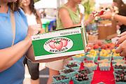 Fresh Northwest Berries Box