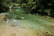 Clear mountain waters of the Savica river at Ucanc near Lake Bohinj, on 19th June, in Lake Bohinj, Sovenia.