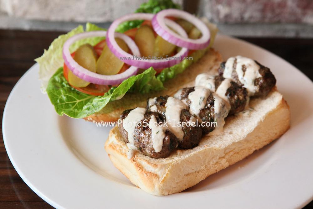 Kebab sandwich with salad and tahini