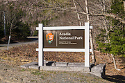Acadia National Park! We were so happy to arrive here. We've been to Acadia before, and absolutely loved the park.