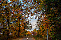 Fall - Autumn scenes in Sweden