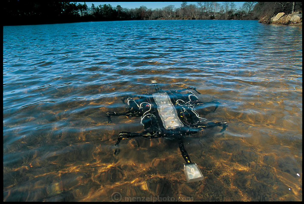Just below the surface of a reservoir outside Boston, MA,  robot Ariel, built by the Massachusetts firm iRobot, walks sideways like the crab it is patterned on. A machine with a serious purpose, it is designed to scuttle from the shore through the surf to search for mines on the ocean floor. Ariel was funded by the Defense Advanced Research Projects Agency and built by iRobot, a company founded by MIT robot guru Rodney Brooks. Inspired by research on crabs at Robert Full's lab at Berkeley, Ariel takes advantage of the animal's stability and improves on it. From the book Robo sapiens: Evolution of a New Species, page 84-85.