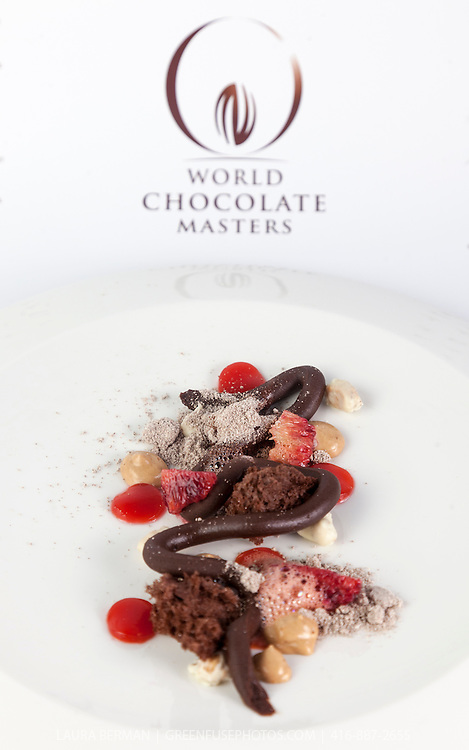 Royce Li's Plated Chocolate Dessert. World Chocolate Masters Canadian Selection, January 20, 2013.