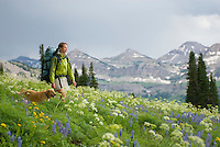 A young woman and her dog hike through a flowery alpine meadow in the Targhee National Forest, Wyoming.