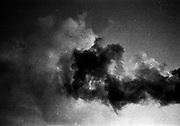va la vita, va, amore<br /> va la vita, va, amore<br /> va così la vita, amore<br /> va, la vita va.<br /> <br />  giugno  2016 . Daniele Stefanini /  OneShot