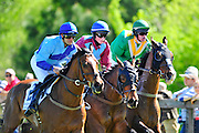 April 7, 2012 - Field early in the Sandhills Cup at Stoneybrook Steeplechase, Raeford NC