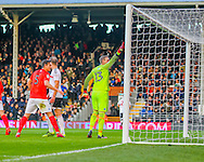 David Stockdale  of Brighton after his penalty save for Brightobn Hove Albion during the Sky Bet Championship match at Craven Cottage, London<br /> Picture by Richard Brooks/Focus Images Ltd 07947656233<br /> 02/01/2017