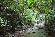 An Iban guide walks up a steam in the rainforest, Ulu Temburong National Park, Brunei
