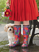 Girl in red dress wearing Wellies boots with her dog.<br /> <br /> Gardener's Supply Company