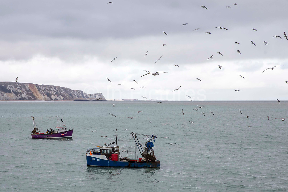 Two British fishing boats are surrounded by seagulls while fishermen prepare their catch for landing at they arrives back into Folkestone Harbour after inshore trawling in the English Channel. United Kingdom.