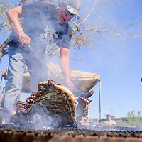 Herman Jay pulls fresh mutton from the fire during a sheep butchering and barbecue at Red Rock Care Center in Gallup Friday.