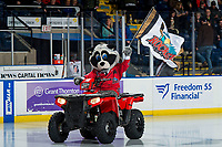 KELOWNA, CANADA - MARCH 9: Rocky Raccoon, the mascot of the Kelowna Rockets, enters the ice on his Polaris quad against the Kamloops Blazers on March 9, 2019 at Prospera Place in Kelowna, British Columbia, Canada.  (Photo by Marissa Baecker/Shoot the Breeze)