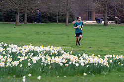 ©Licensed to London News Pictures 20/03/2020<br /> Greenwich, UK. A runner in Greenwich Park keeping fit. A bright but cloudy day in Greenwich Park, Greenwich, London. Photo credit: Grant Falvey/LNP