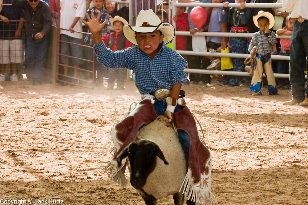 """10 SEPTEMBER 2004 - WINDOW ROCK, AZ: A Navajo boy rides a sheep during the """"Wooly Ride"""" at the 58th annual Navajo Nation Fair in Window Rock, AZ. The Navajo Nation Fair is the largest annual event in Window Rock, the capitol of the Navajo Nation, the largest Indian reservation in the US. The Navajo Nation Fair is one of the largest Native American events in the United States and features traditional Navajo events, like fry bread making contests, pow-wows and an all Indian rodeo. The Wooly Ride, also called Mutton Busting, is a rodeo for children six years old and younger. The youngsters are set on a sheep which is then turned loose in the arena. Points are awarded for style and length of ride. Wooly Riding is extremely popular on the Navajo reservation, which has a strong cattle and sheep ranching tradition.  PHOTO BY JACK KURTZ"""