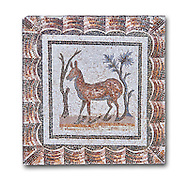 3rd century AD Roman mosaic depiction of two deer between two shrubs. Thysdrus (El Jem), Tunisia.  The Bardo Museum, Tunis, Tunisia. White background .<br /> <br /> If you prefer to buy from our ALAMY PHOTO LIBRARY  Collection visit : https://www.alamy.com/portfolio/paul-williams-funkystock/roman-mosaic.html - Type -   Bardo    - into the LOWER SEARCH WITHIN GALLERY box. Refine search by adding background colour, place, museum etc<br /> <br /> Visit our ROMAN MOSAIC PHOTO COLLECTIONS for more photos to download  as wall art prints https://funkystock.photoshelter.com/gallery-collection/Roman-Mosaics-Art-Pictures-Images/C0000LcfNel7FpLI