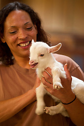 """Elizabeth Abram, a lead keeper at the Oakland Zoo, holds Jeffrey, one of four goats born at the zoo last week, Wednesday, Feb. 27, 2013 in Oakland, Calif. Zookeepers said that the unusual litter, or """"tribe"""" of four goats were the first at the zoo in more than 15 years. (D. Ross Cameron/Staff)"""
