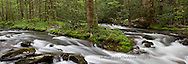 66745-04510 Panoramic of Straight Fork Creek in spring, Great Smoky Mountains National Park, NC