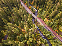 Aerial view of a road crossing the forest in Oregon, USA.