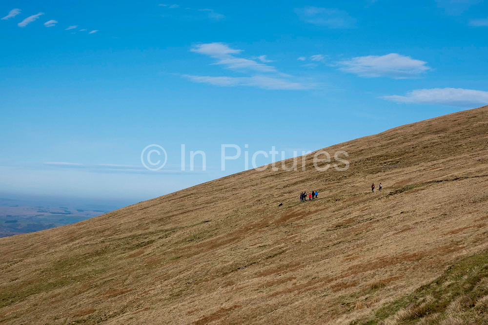 A group of walkers traverse a dirt path descending from  Pen Y Fan in Brecon Beacons National Park, Wales, Powys, United Kingdom.  Pen Y Fan is the highest point in the Brecon Beacons hill and mountain range in South Wales. The National Park was established in 1957 due to the spectacular landscape which is rich in natural beauty and is run by the National Trust.