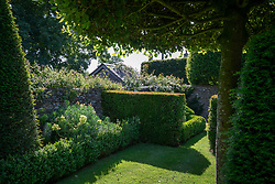 Rosa 'Louise d'Arzens', R. Rosa 'Crème de la Crème' and 'Claire Jacquier' growing on wall and summerhouse roof