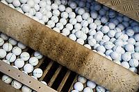 AMSTERDAM - Golfballen in de ballenwasser, ,  COPYRIGHT KOEN SUYK