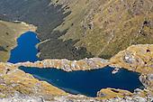 Mount Burns Tarns Track, Fiordland