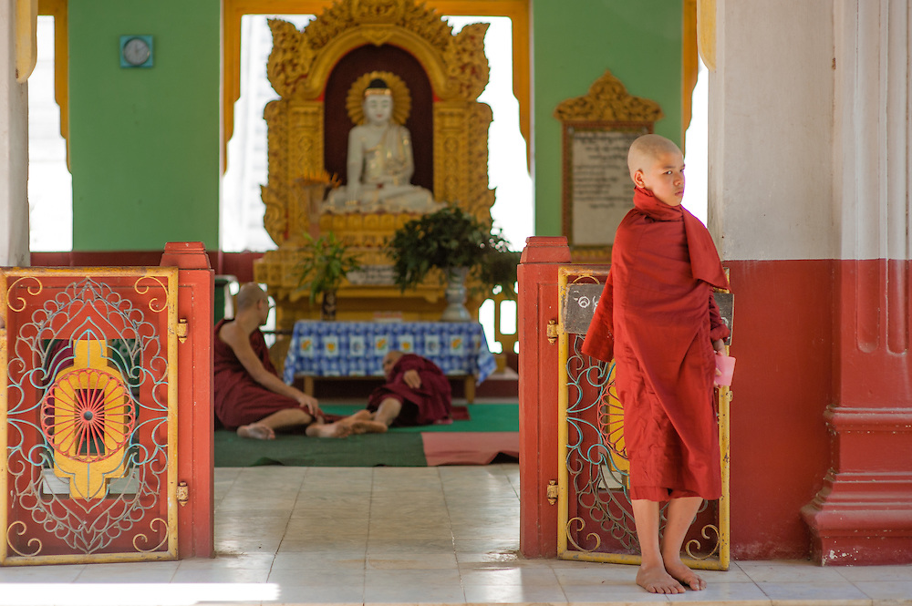Young Buddhist monk at local shrine (Myanmar)