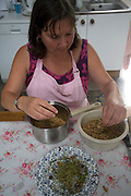 Model released mature woman cleaning white currants fruit in kitchen, UK