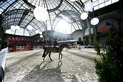 March 16, 2018 - Paris, France, France - BRUYNSEELS Niels (Bel) - Cairon .vue generale du Saut Hermes sous la Nef du Grand Palais (Credit Image: © Panoramic via ZUMA Press)