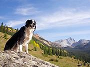 Scenic view of Capitol Peak, Elk Mountains