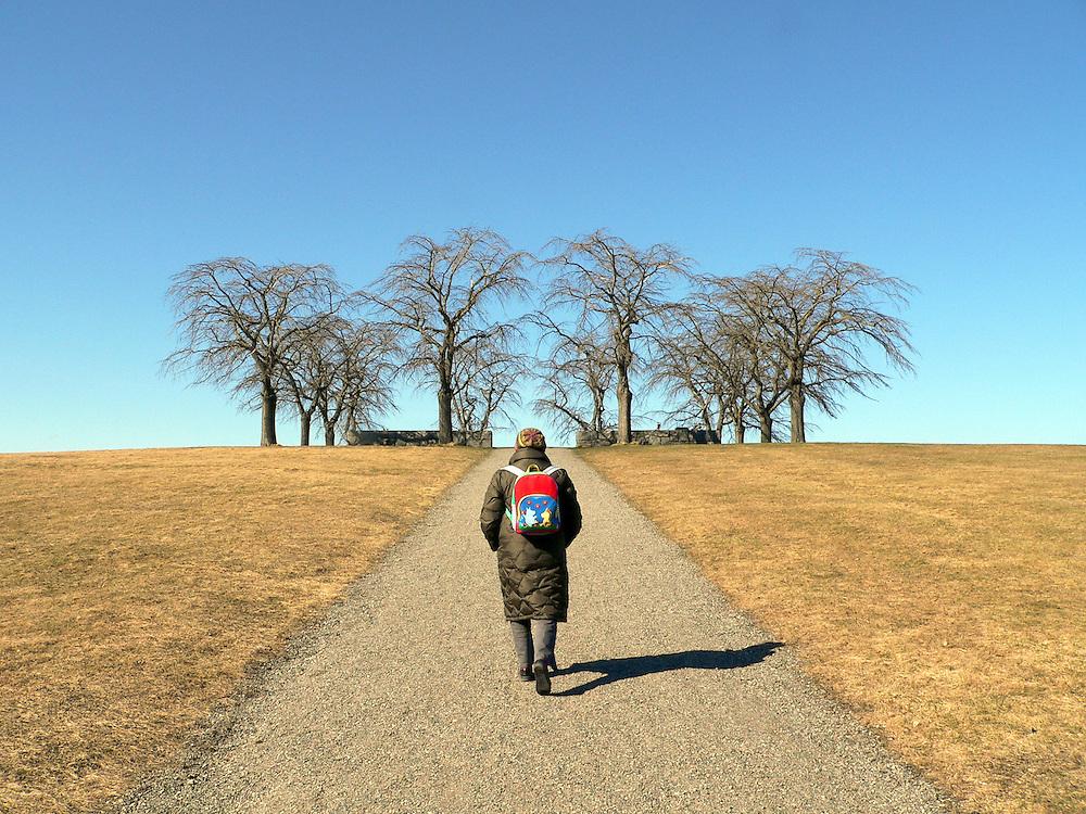 Vägen upp mot Almhöjden på Skogskyrkogården, även kallad Meditationslunden.
