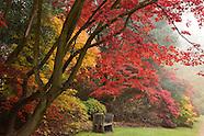 Autumn & Winter scenes