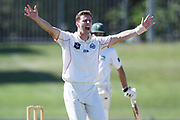 Canterbury's Matt Henry appeals in the Plunket Shield Cricket match, Central Districts v Canterbury, McLean Park, Napier, Tuesday, April 06, 2021. Copyright photo: Kerry Marshall / www.photosport.nz