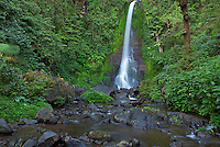 Indonesie. Bali. Cascade de Gitgit. // Indonesia. Bali. Gitgit waterfall.