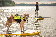 Promotional material for Nashville Padle Company shot at Percy Priest Lake in Nashville, TN