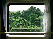 Jungle between Guangzhou and Shaoguan. <br /> Window view across China, from Hong Kong to Urumqi, Xinjiang.