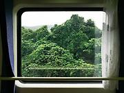 Jungle between Guangzhou and Shaoguan. <br /> Window view across China, from Hong Kong to Urumqi, Xinjiang.