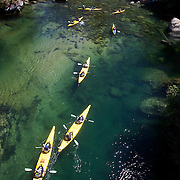 Kayaking on the Abel Tasman