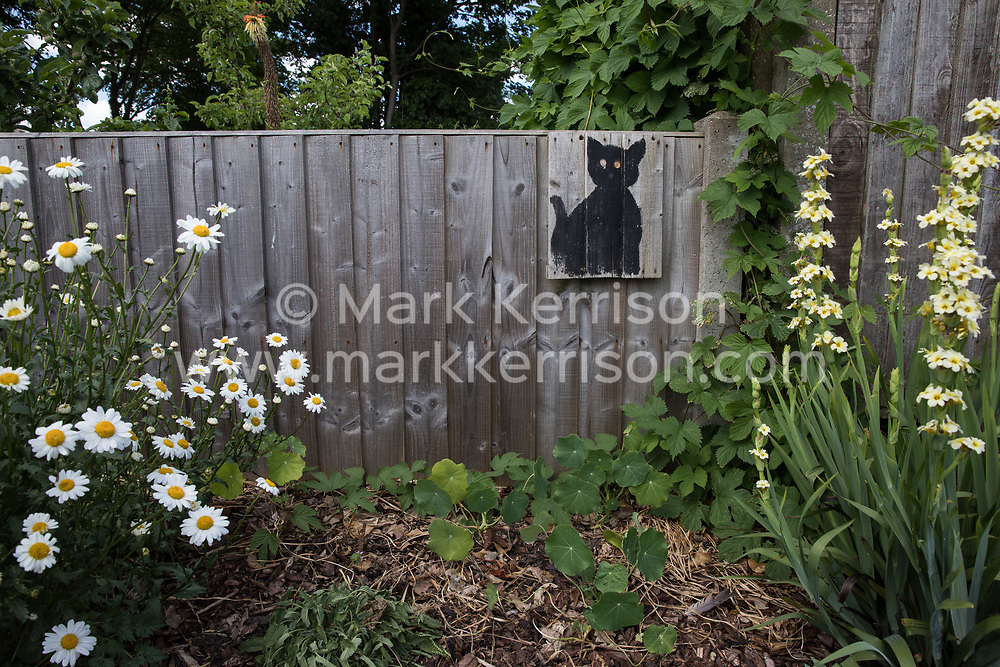 A black cat stencil by a street artist dubbed 'Catsy' by local residents is pictured on 8th June 2021 in Wokingham, United Kingdom. This stencil was appreciated so much by its owners that it was fixed to a replacement fence following storm damage. There are believed to be around 30-40 such black cat stencils sprayed around Wokingham by the anonymous street artist.