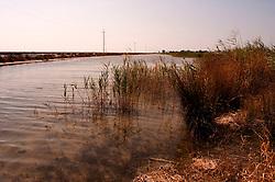 Il complesso produttivo delle saline è situato nel comune italiano di Margherita di Savoia (nome dato dagli abitanti in onore alla regina d'Italia che molto si adoperò nei confronti dei salinieri) nella provincia di Barletta-Andria-Trani in Puglia. Sono le più grandi d'Europa e le seconde nel mondo, in grado di produrre circa la metà del sale marino nazionale (500.000 di tonnellate annue).All'interno dei suoi bacini si sono insediate popolazioni di uccelli migratori e non, divenuti stanziali quali il fenicottero rosa, airone cenerino, garzetta, avocetta, cavaliere d'Italia, chiurlo, chiurlotello, fischione, volpoca..Canale di raccolta delle acque marine .