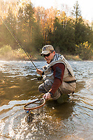 Angler, Mark Waslick landing a fly caught landlocked atlantic salmon on the Clyde River in the Northeast Kingdom, Vermont
